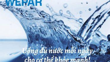 11 Vai trò của nước đối với tế bào cơ thể con người