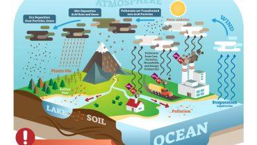 Độ PH của nước mưa là bao nhiêu, có axit không, có chứa thành phần gì?
