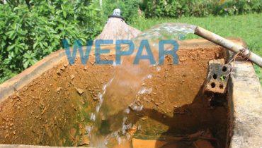 Nguồn nước nhiễm phèn có tưới cây được không? Có tác hại gì