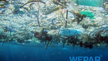 Ô nhiễm môi trường nước là gì? Hậu quả, biện pháp khắc phục