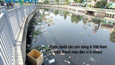 Thực trang ô nhiễm nguồn nước hiện nay và hậu quả nghiêm trọng