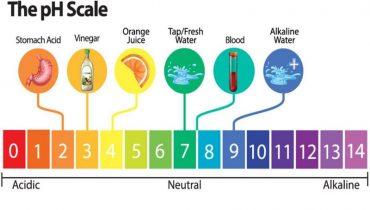 Nước uống có độ PH bao nhiêu tốt, là uống được, cách đo độ PH?