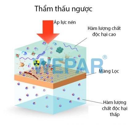 cach-xu-ly-nuoc-bi-nhiem-amoni-bang-phuong-phap-ro
